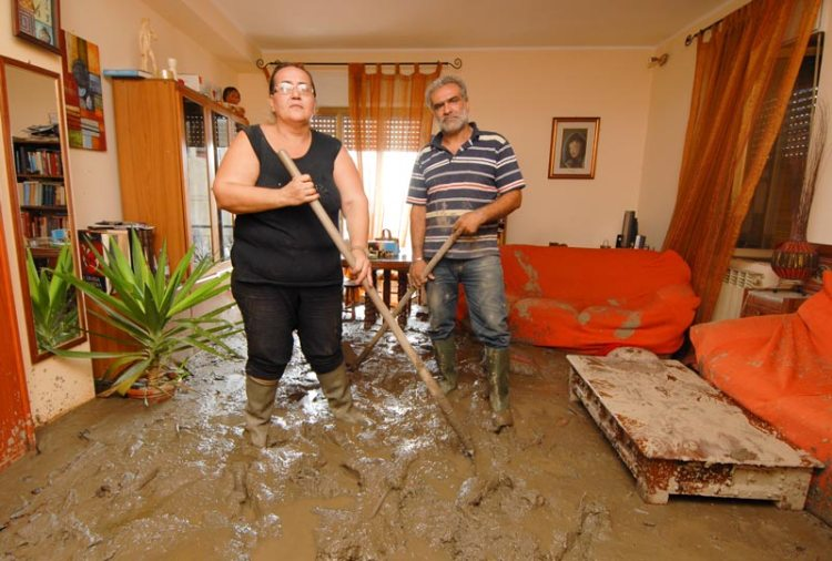 home flood restoration industry can use Roll-n-Vac