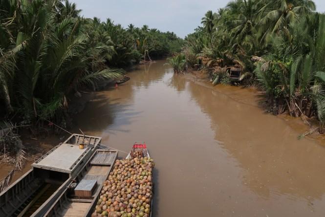canal-mekong-delta-region