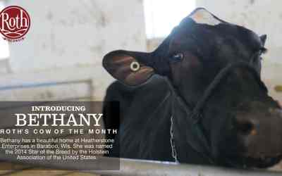 March Cow of The Month