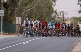 The peloton cruise out of Lyndoch