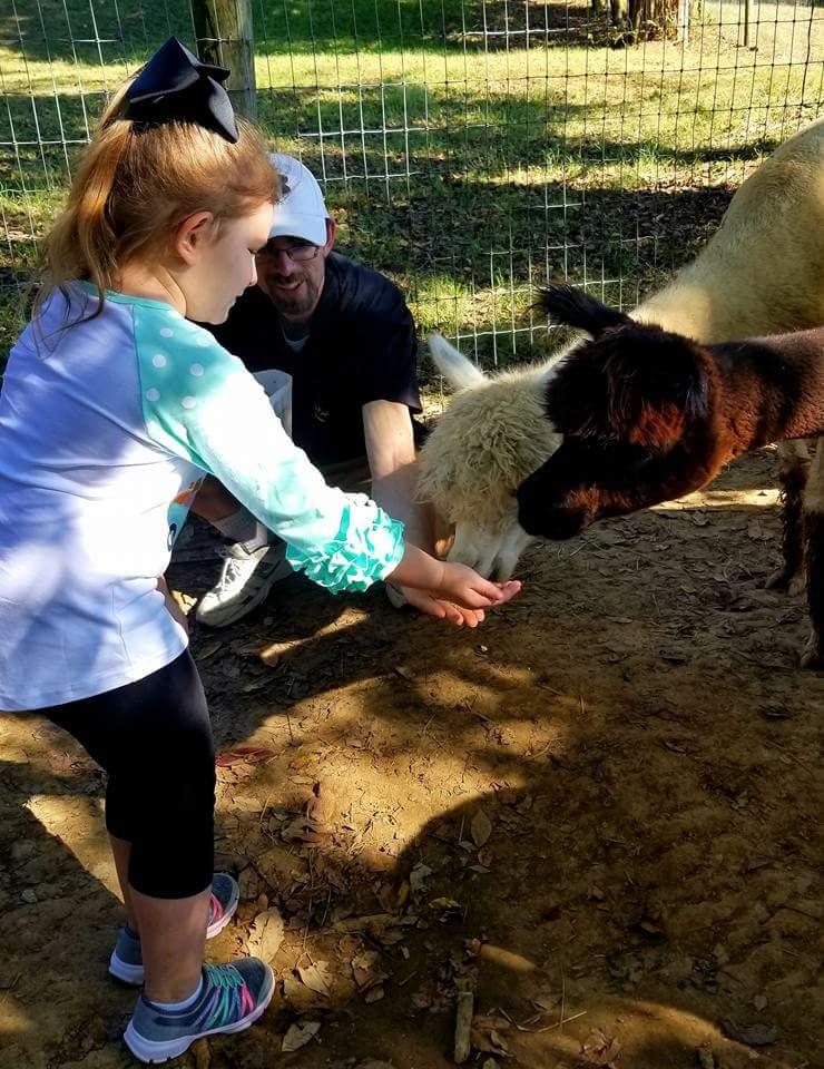 National Alpaca Farm Days - Rolling Oak Alpaca Ranch