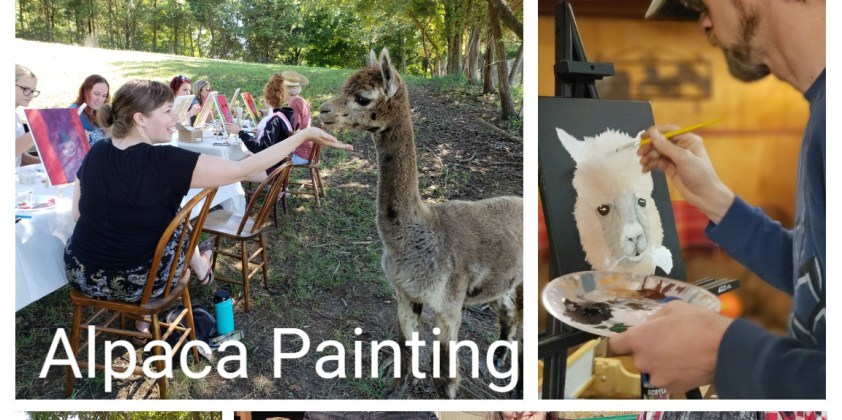 Afternoon Alpaca Painting