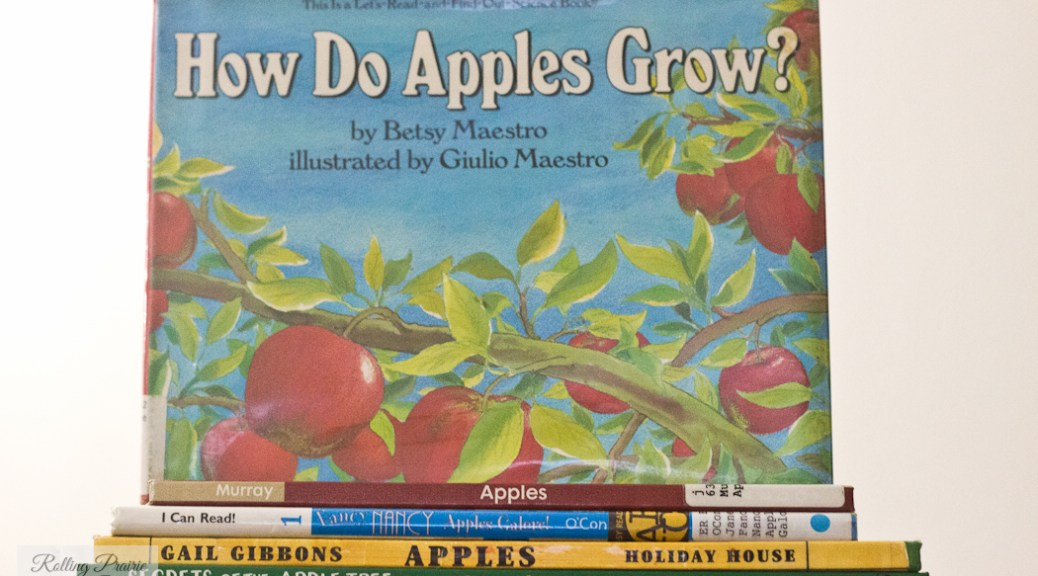 best apple books