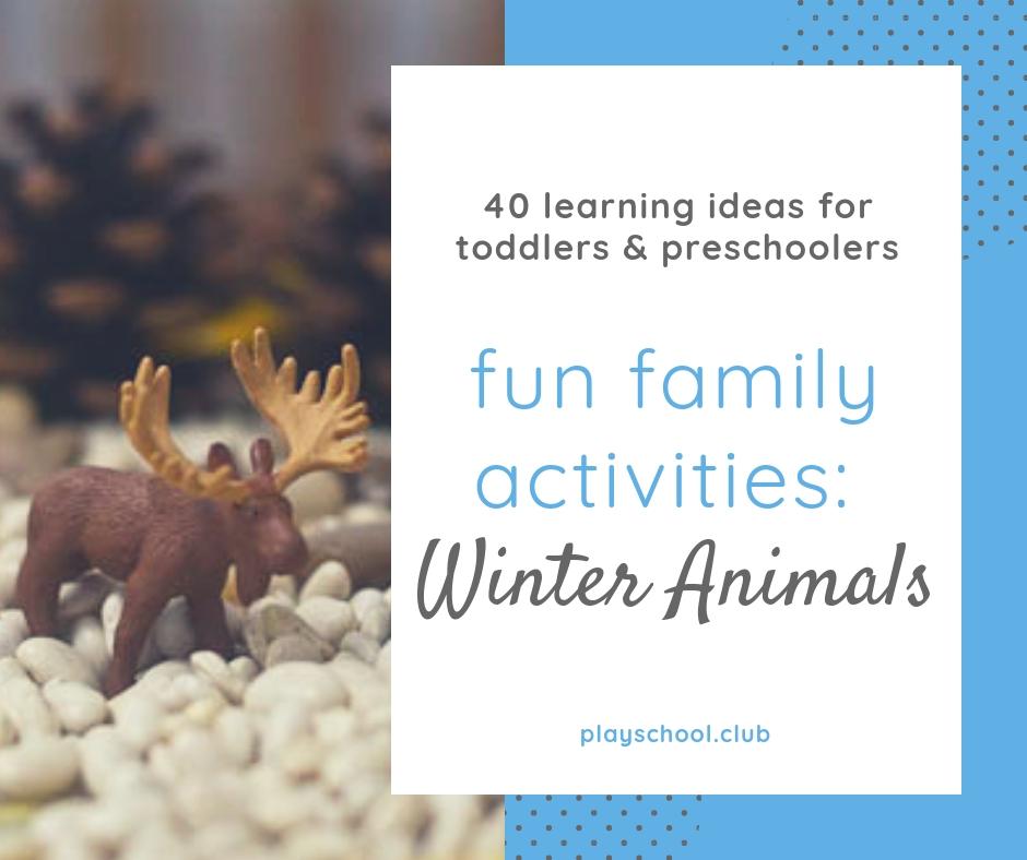 Fun Family Activities: Winter Animals