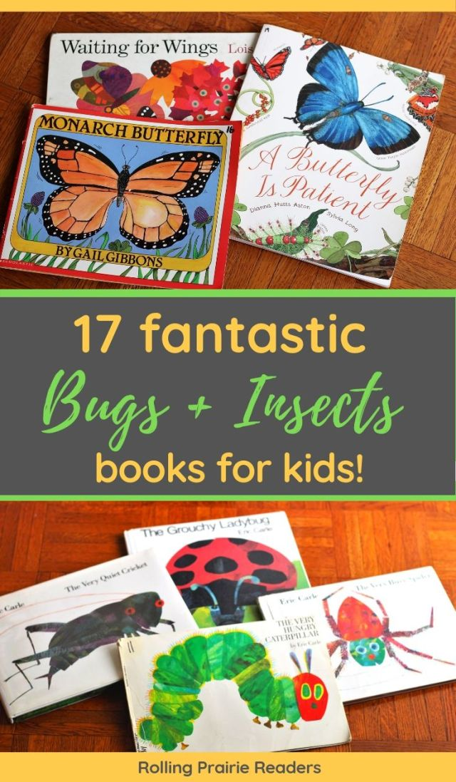 17 Fantastic Insect and Bug Books for Kids
