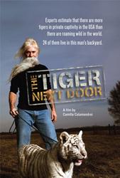 tiger-doc2