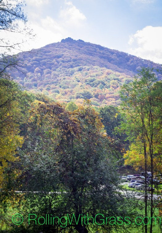 View of Sharp Top Mountain at Peaks of Otter Rolling with Grass VA 10 2014