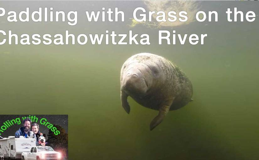 Paddling with Grass on the Chassahowitzka River