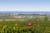 Nova Scotia Wineries Luckett