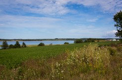PEI Confederation Bike Trail-97
