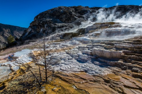 Yellowstone-Mammoth Hot Springs-7452