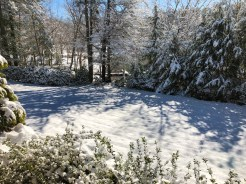 2017 Dec_Lake House Snow_0025