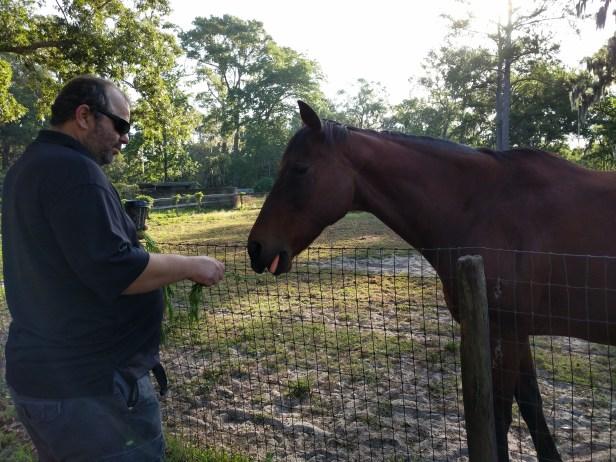 chad&horse