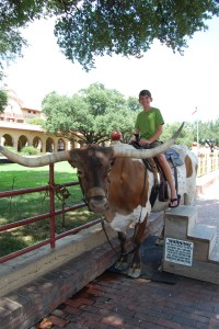 We did the tourist thing and paid to sit on a Longhorn :)