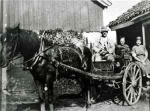 Bøndene på Rolvsøy leverte melk til meieriene på Lisleby eller Greåker. På bildet fra 1925 sitter Ole Walle (1862) med hustruen Marie Lovise og datteren Karen. Det fortelles at en gang datteren Signe kjørte melken til Greåker ble hesten skremt av en bil slik at hun kjørte av veien og spannene trillet ut i diket. Bøndene var ikke begeistret for biltrafikken. Da veivesenet la asfalt på Rolvsøyveien protesterte Bondelaget og meddelte at veivesenet ville bli holdt ansvarlig om vognene kjørte av veien på grunn av at jernhjulene skled mot asfalten. Kilde: Rolvsøy bygdebok s. 440