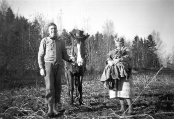 """Arthur Næss var spesielt glad i hester og fødde også opp travhester. Han var en munter og farverik person som gjorde seg bemerket i torvmiljøet. På sydlandsk vis kunne han rope ut: """"Kom og kjøp torvets beste poteter"""", eller han sang eller tok en liten dans med kundene. Naboene på Liane kunne høre hans glade sang, når han var på hjemvei med hesten. Her har Arthur utstyrt """"Borken"""" med cowboyhatt til ære for fotografen. Martha Henriksen har favnen full med potetsekker. Det var tid for potetopptaking. Fotograf ukjent. Eier: Svein Næss."""