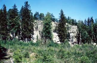 Litt nord for plassen Borgeli skimtes i dag fra veien en steil fjellvegg som har vært en del av et befestningsverk. På toppen er et platå med bra utsikt. På nord og vestskrentene ligger rundkamp. Stenen har vært en del av befestningsverket som skulle hindre fienden i å trenge inn. Slike bygdeborger var vanlige i folkevandringstiden (ca 400-570 e.Kr.) Det ligger også en bygdeborg på Høidal. Foto: Odd Ketil Johnsen