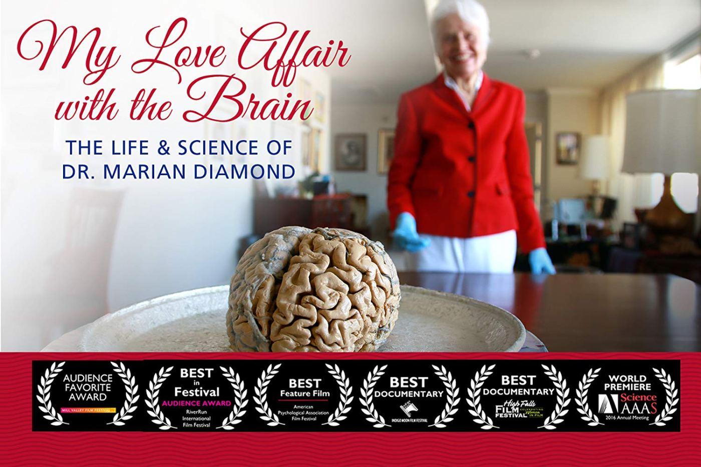 Love Affair with the Brain