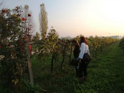 visita serbi S. Tomè Guarini