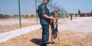 Πολεμική Αεροπορία: «Καλεί σε υπηρεσία» 23 σκύλους
