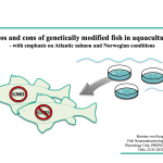 Video on the Pros and cons of genetically modified fish in aquaculture made in our lab