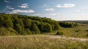 Landscape near Yamaskaya steppe