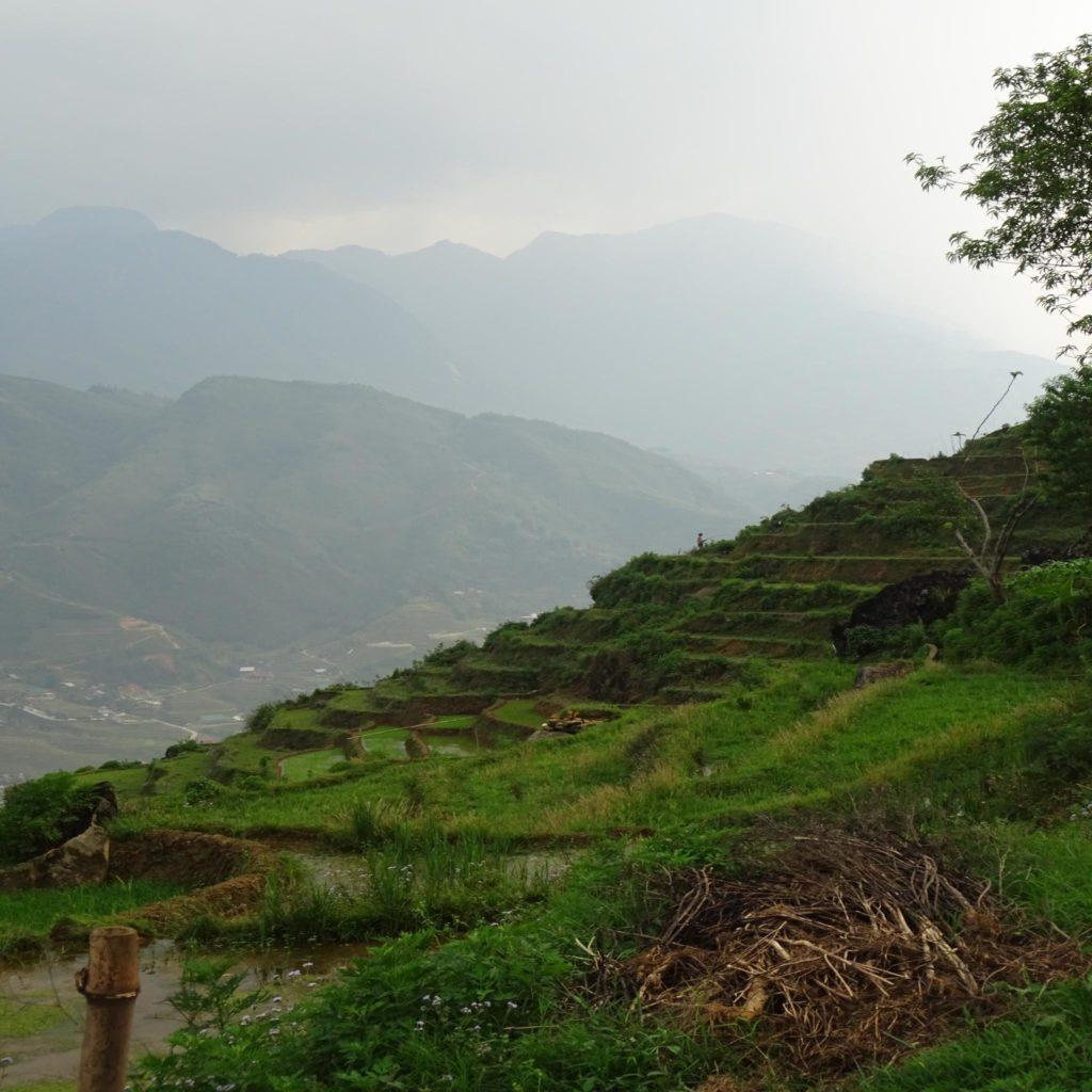 Paysages autour de Ta Van (région de Sapa, Vietnam)