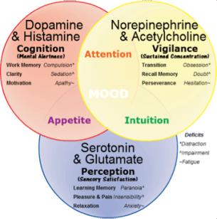 acetylocholine