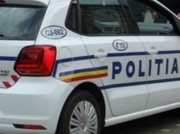"""Câini vânaţi cu arbaleta, pe străzi din România: """"Poliţie!!! Cineva să ne ajute să găsim criminalul!"""" 6"""