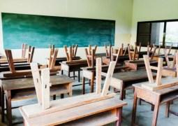 Școală online și din toamnă?! Ministrul Educației spune ca la toamna nu vom mai avea clase cu 30 de elevi 70