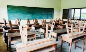 Școală online și din toamnă?! Ministrul Educației spune ca la toamna nu vom mai avea clase cu 30 de elevi 41