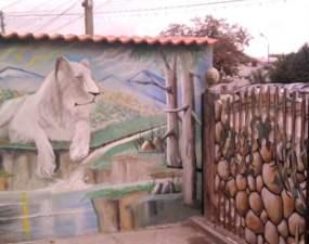 """(Video) Satul pictat din România, devine o atracție turistică datorită unui electrician talentat. Sorin Grecu: """"Fac lumea veselă pe stradă"""" 46"""