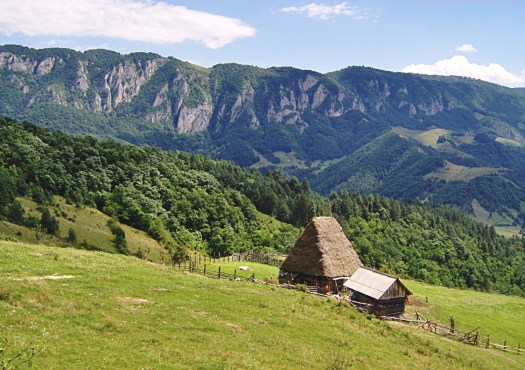 Traditional houses in Apuseni mountains