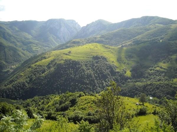 secuiului rock limestone massif