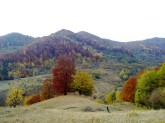 tara luanei luana's land beautiful autumn romania