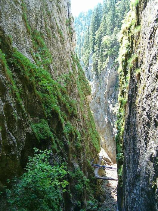 Cheile_Orzei cheile corcoaiei Carpathians mountains Romania