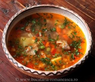 ciorba-taraneasca-de-porc-traditional-romanian-food-kitchen-christmas