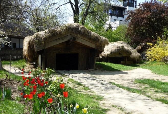 """Muzeul Naţional al Satului """"Dimitrie Gusti"""" - Bordei din Castranova, jud. Dolj"""