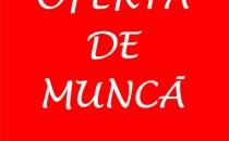 OFERTĂ DE MUNCĂ: Meseriaş universal (zidar de 1ª), zona Madrid