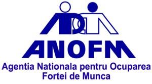 Agenia Nationala pentru Ocuparea Fortei de Munca