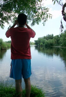 Bird Watching in the Danube Delta