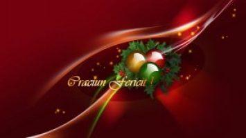 craciun_fericit_22_97468500