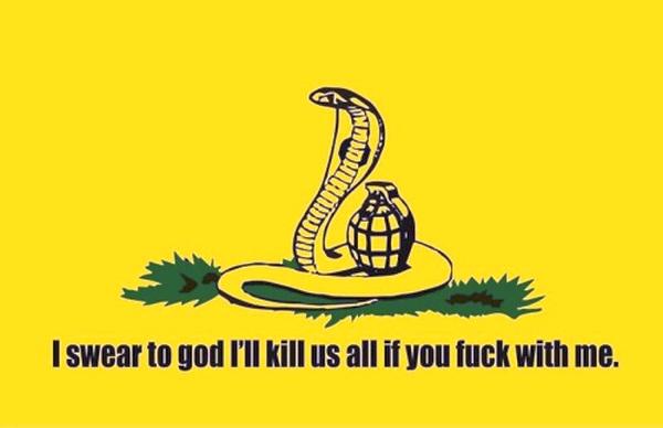 the best gadsden flag