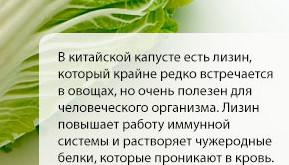poleznaya-pekinskaya-kapusta