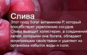 poleznaya-sliva