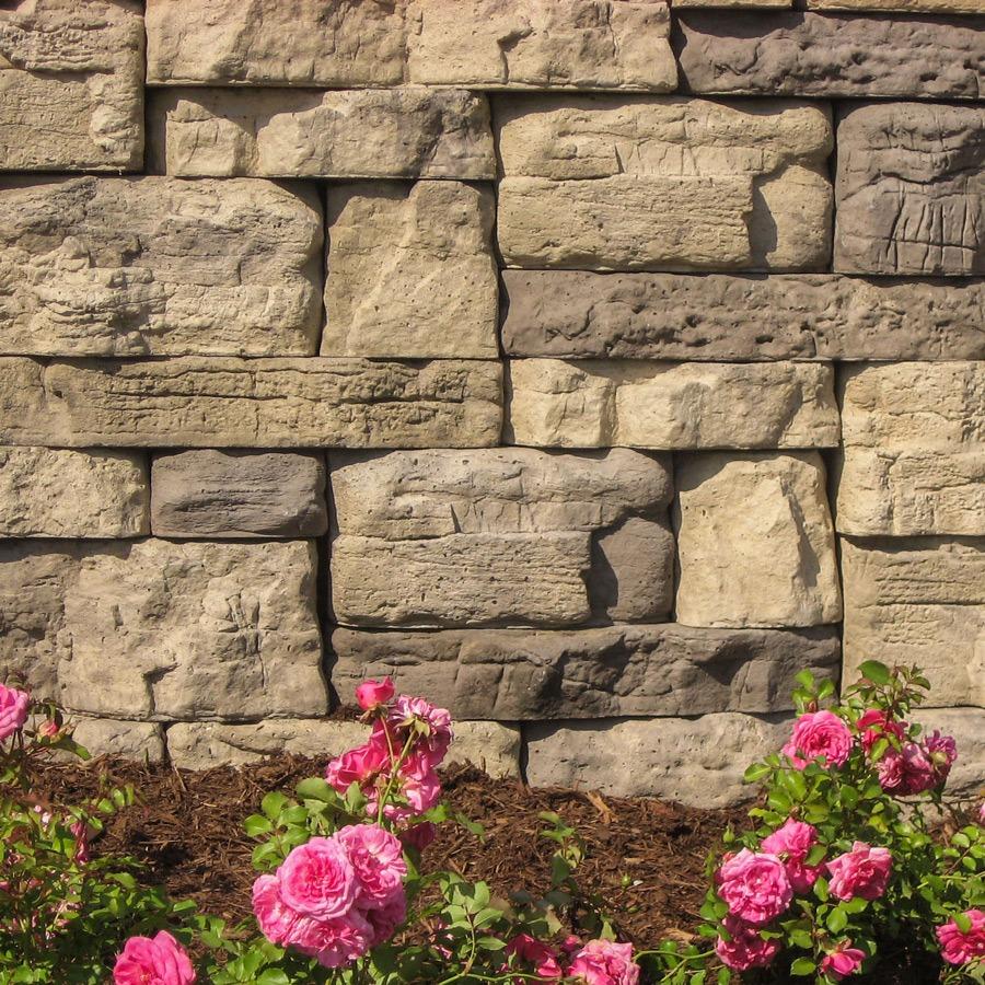 rosetta by romanstone