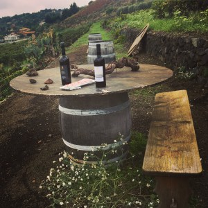 Benanti Tasting in the Vineyard