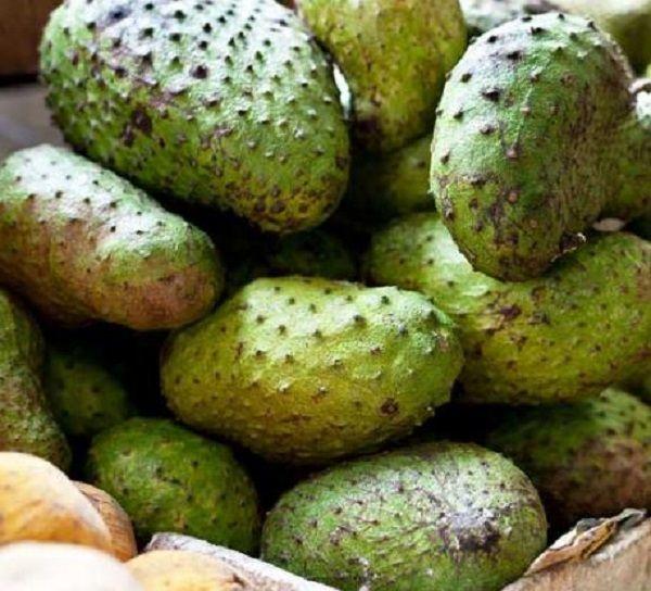 guanabana-fruit