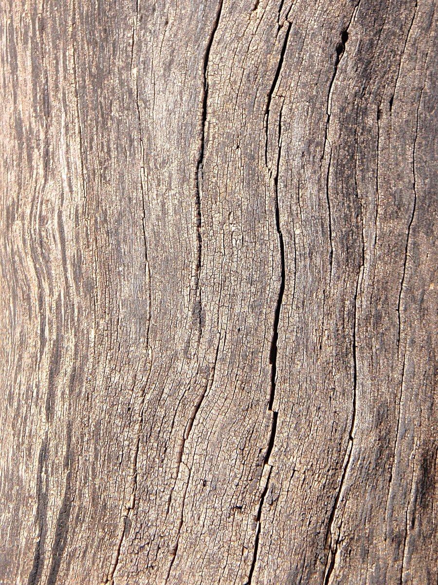 Raccolta di texture sul legno  Romina Comaschi Portfolio