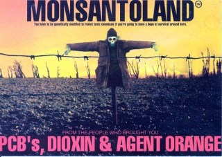 monsanto romina malizia blog